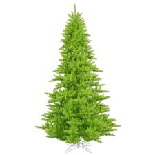 5.5' Lime Fir Artificial Christmas Tree with Unlit