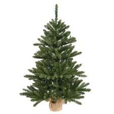 Anoka 2' Pine with Burlap Base Artificial Christmas Tree