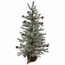 Fresh Pistol 5' Pine Tree Artificial Christmas Tree with 35 Clear Lights