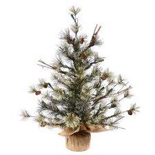 Mountain Ridge Dakota 2'  Pine with Burlap Base Artificial Christmas Tree