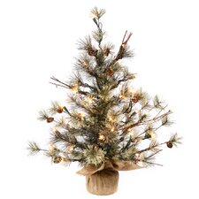 Mountain Ridge Dakota 2' Pine with Burlap Base Artificial Christmas Tree with 35 Clear Light