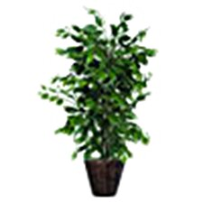 Bushes Artificial Potted Natural Ficus Tree in Basket