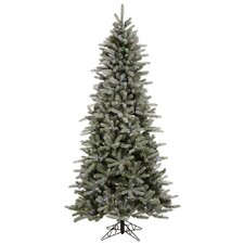 Frosted Frasier Fir 6.5' Green Artificial Christmas Tree with 330 Multicolored LED Lights with Stand
