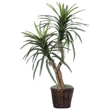 "Deluxe 48"" Artificial Potted Natural Marginata Tree in Dark Green"