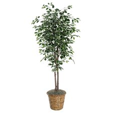 Deluxe Artificial Potted Natural Ficus Tree in Basket