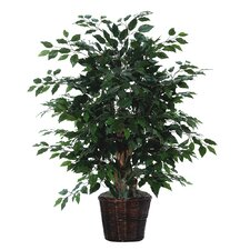Deluxe 4' Artificial Potted Natural Ficus Tree in Dark Green
