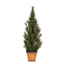 Deluxe Cedar Tree in Pot