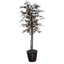 <strong>Vickerman Co.</strong> Nisswa Berry Economy Mystic Ficus Tree in Basket