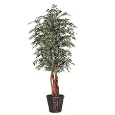 <strong>Vickerman Co.</strong> Blue Ridge Fir Executive Variegated Smilax Tree in Basket