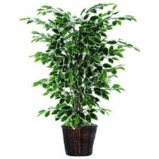 Bushes 4' Artificial Potted Natural Variegated Ficus Tree in Dark Green