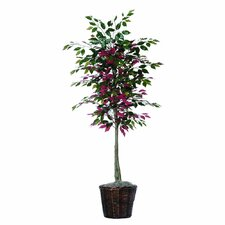 Designer 6' Artificial Potted Natural Capensia Tree in Green and Red
