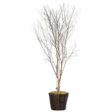 Deluxe Artificial Potted Natural Winter Birch Tree in Basket