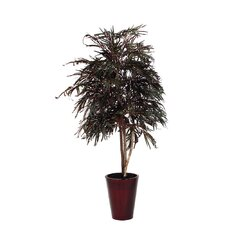 <strong>Vickerman Co.</strong> Acacia Heartland / Round Embossed Tree in Pot