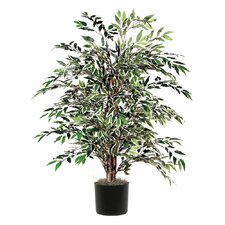 <strong>Vickerman Co.</strong> Smilax Variegated Bush Tree in Pot