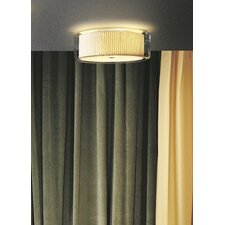 Mercer 2 Light  C Wall / Ceiling Light