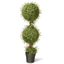 Tea Leaf Mini 2-Ball Topiary in Pot
