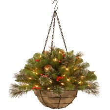 "Crestwood Spruce Pre-Lit 20"" Chain Hanging Basket with 50 Battery-Operated White LED Lights"