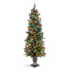 Crestwood Spruce Entrance 5' Green Artificial Christmas Tree with 150 Pre-Lit Clear Lights with Urn Base