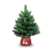 Small Majestic Fir Tree