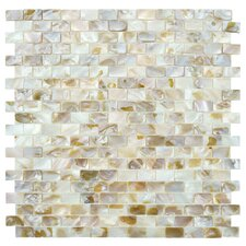 Shore Seashell Textured Mosaic in Natural