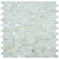 Shore Seashell Textured Mosaic in White