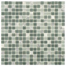 Ambit Glass and Stone Mosaic Tile in Fortress