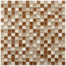 "Sierra 11-3/4"" x 11-3/4"" Polished Glass and Stone Mini Mosaic in Breno"