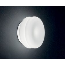 Wimpy Wall/Ceiling Sconce