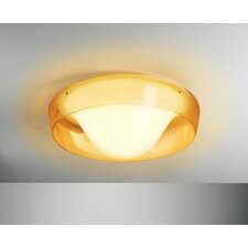 Jellyfish Wall/Ceiling Sconce