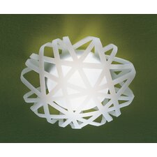 X-Ray 1 Light Semi Flush Mount