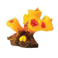 Design Elements Torch Coral Aquarium Ornament