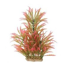 Natural Elements Alternanthera Aquarium Ornament in Pink / Green