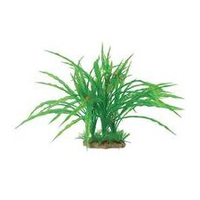 Natural Elements Cryptocoryne Combo Aquarium Ornament in Green