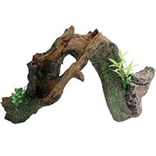 Design Elements Split Root Arch Ornament