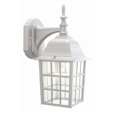 Earl Grey 1 Light Outdoor Downlight Wall Lantern
