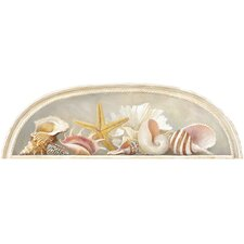 Mural Portfolio II Sea Shell Accent Wall Decal
