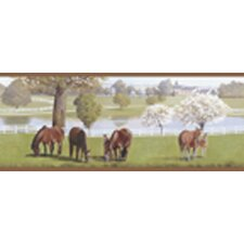 Mural Portfolio II Horse Farm with White Fences Border Wallpaper