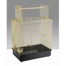 Dora Special Cockatiel and Parakeet Cage in Brass