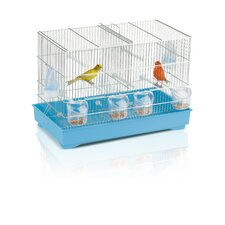 Cova 55 Canary Cage in Chrome