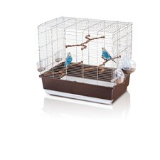 Irene 4 Export Bird Cage in Chrome