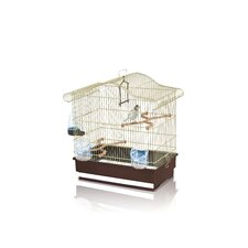 Serena Bird Cage in Brass