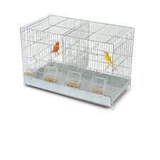 Cova Allevatori Canary Cage in Chrome
