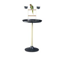 Vogue Parrot Stand in Anthracite