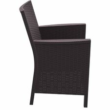California Resin Wickerlook Chair (Set of 2)