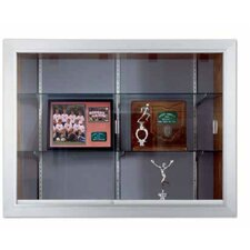 Series 60 Recessed Sliding Door Trophy Case