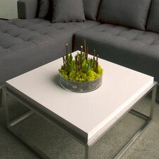 <strong>Gus* Modern</strong> Square Drake Coffee Table