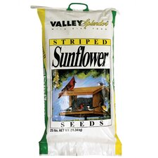 Valley Splendor Striped Sunflower Seed