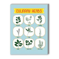 Culinary Herbs Graphic Art on Canvas