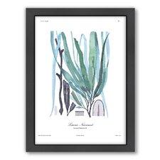 French Kelp Framed Graphic Art in Blue