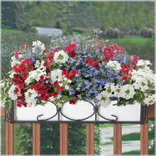 Kingston Rectangle Window Box Holder